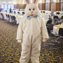Bunny Greeter